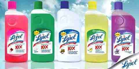 does lysol kill bed bugs fleas scabies dust mites