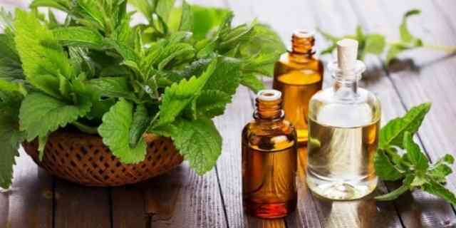 Best Oils for Hair Loss and Regrow
