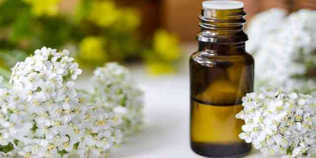 Good Essential Oils Blend to Stop Hair Loss