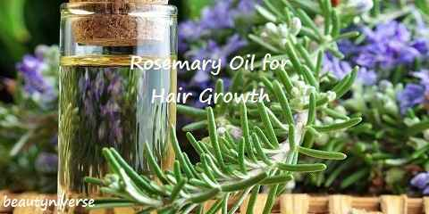 Benefits And Uses Of Rosemary Oil For Hair Growth And Thickness